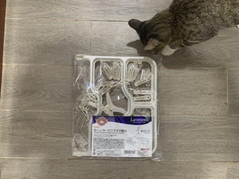 ハンガーピンチと猫